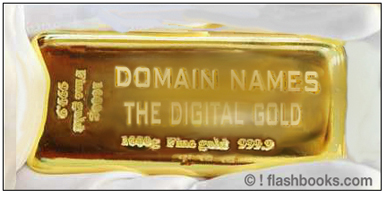 DOMAIN NAMEN - DAS DIGITALE GOLD